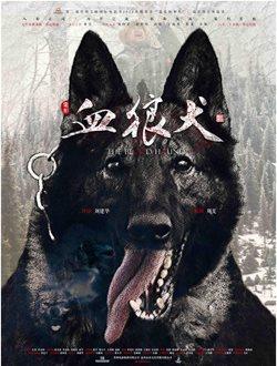 血狼犬剧情介绍