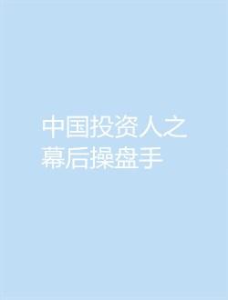 中国投资人之幕后操盘手剧情介绍