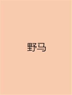 野马剧情介绍