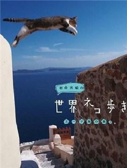 岩合光昭的猫步走世界剧情介绍