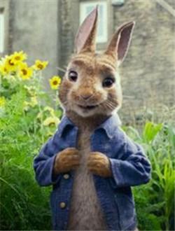 比得兔剧情介绍
