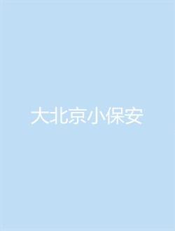 大北京小保安