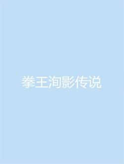拳王洵影传说
