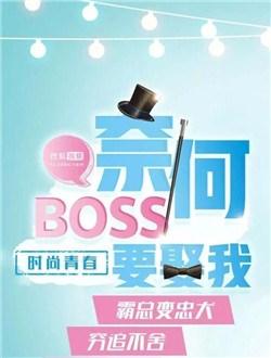 濂堜綍boss瑕佸ǘ鎴�