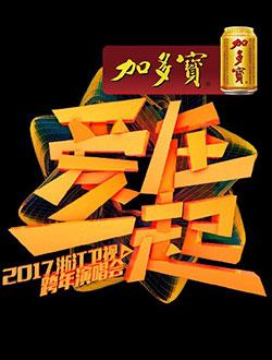 2017浙江卫视跨年演唱会